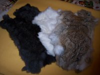 Furs and Tails